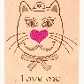 Valentines Cat cards